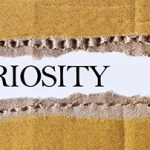Leaders and Curiosity: What Matters Most for CEOs